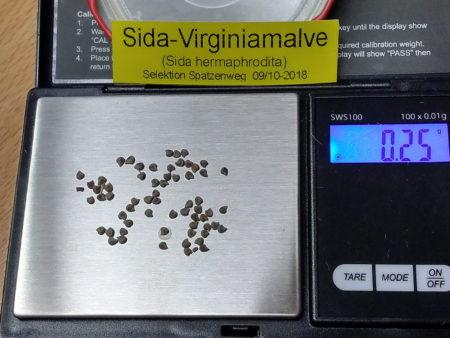 Sida hermaphrodita – Virginiamalve, ca. 50 Korn